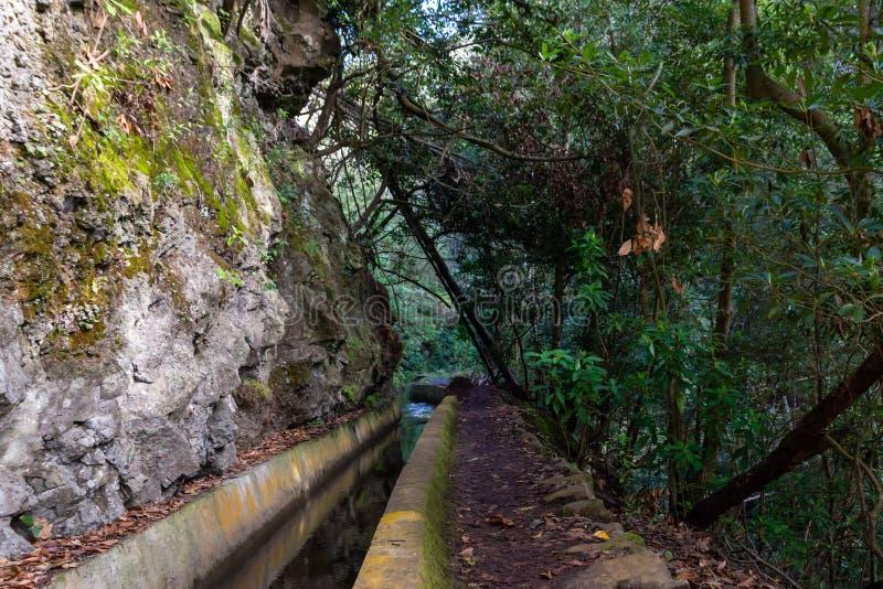 一边有山墙,另一边有树木和植物的典型莱瓦达 免版税库存照片