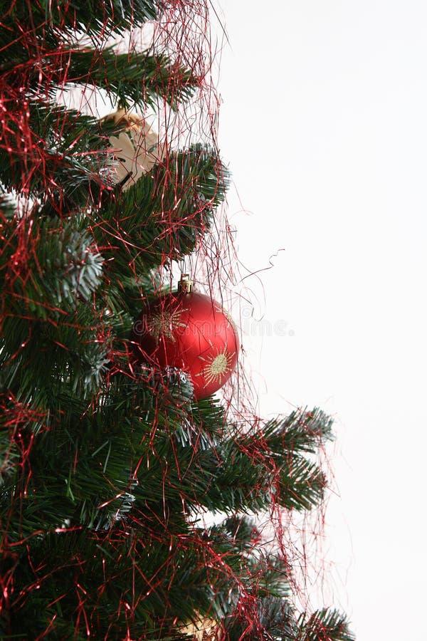 一部分的圣诞树 库存照片