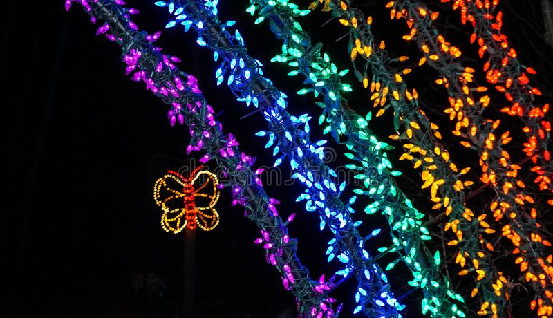 一部分的在圣诞灯的彩虹和蝴蝶光显示 库存照片
