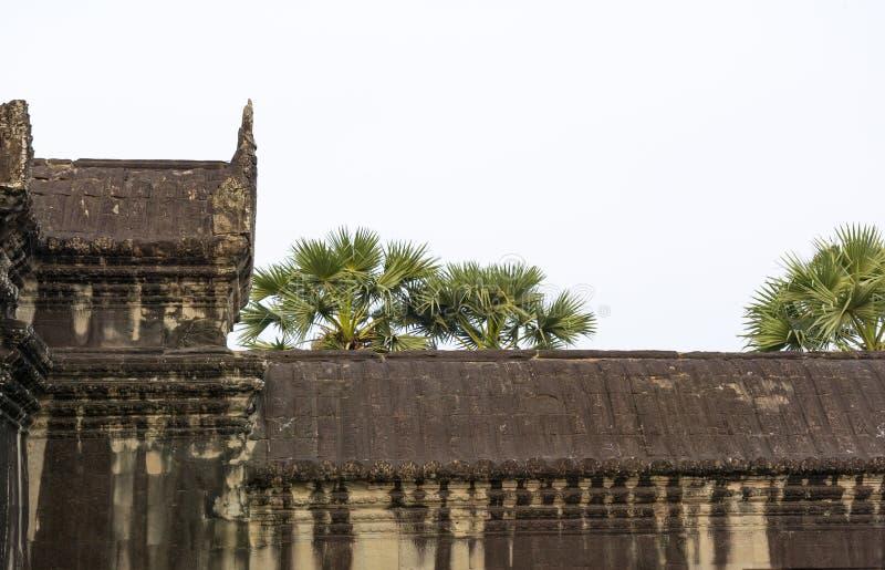 一部分的寺庙复杂吴哥窟的墙壁 柬埔寨 图库摄影
