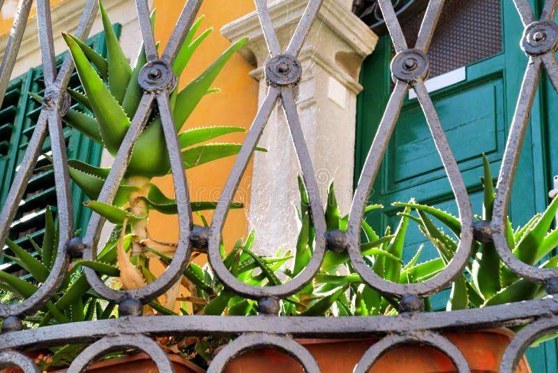 一部分的金属装饰篱芭/钢制焊接装饰物elemen 免版税库存照片
