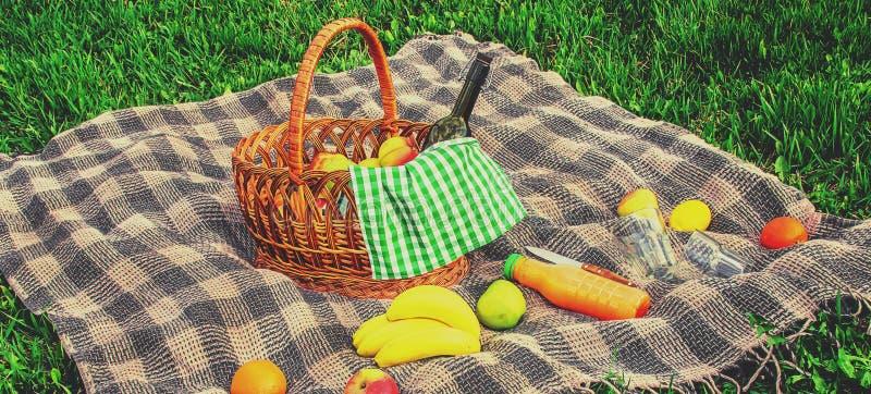 一顿野餐的格子花呢披肩在草 r 库存照片
