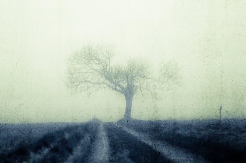 一鬼湿,导致一棵残破的老树的道路silhoutted在天际 在阴沉,有雾,冬日 葡萄酒,blurre 免版税库存照片