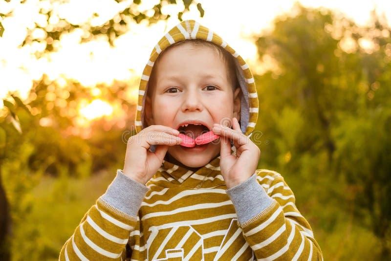 一黄色有冠乌鸦的一个七岁的孩子咬住在美好的光的曲奇饼 免版税库存照片