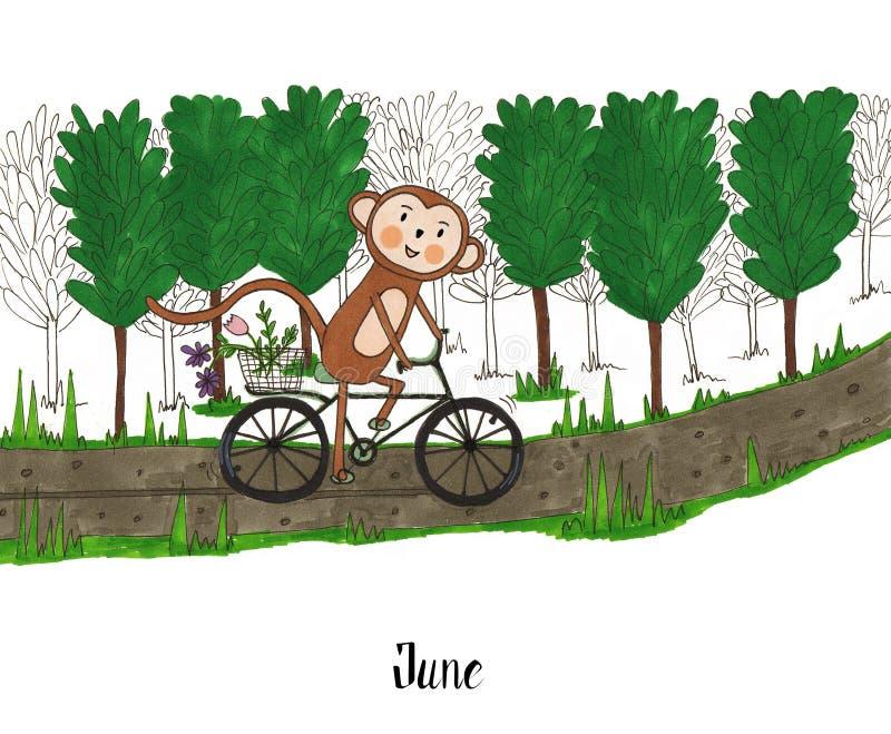 一年在猴子中Lulu的生活 库存例证