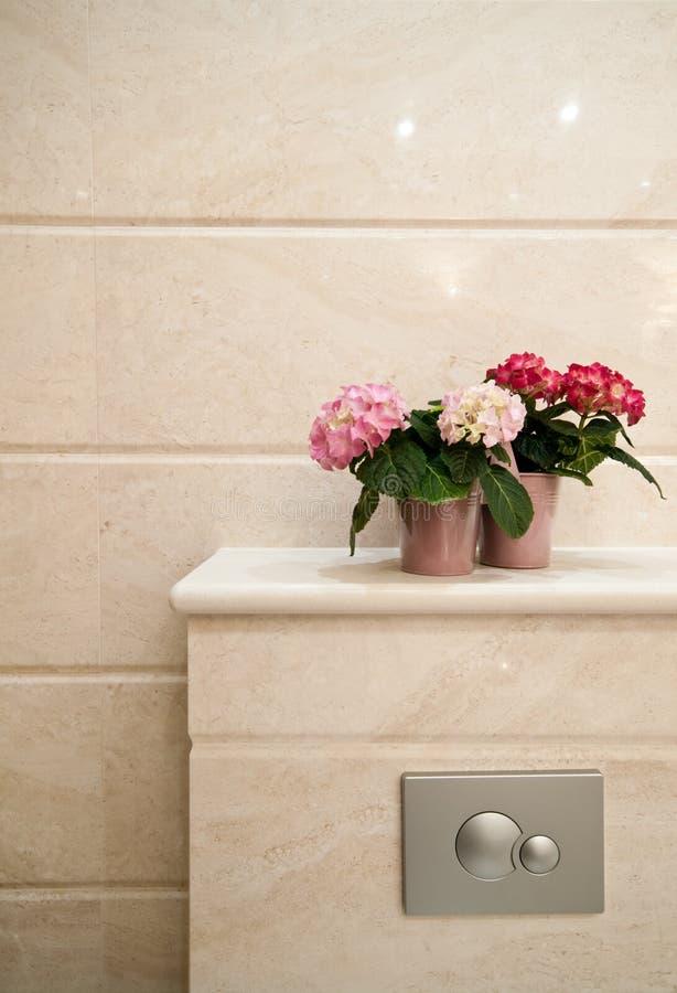 洗手间细节 免版税库存图片