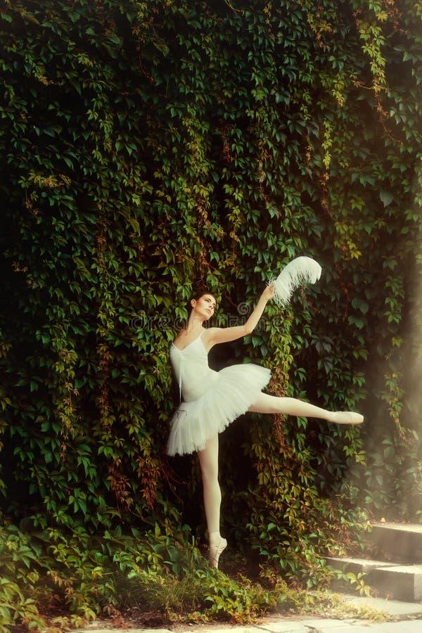 一件白色礼服的妇女芭蕾舞女演员优美地跳舞 库存图片