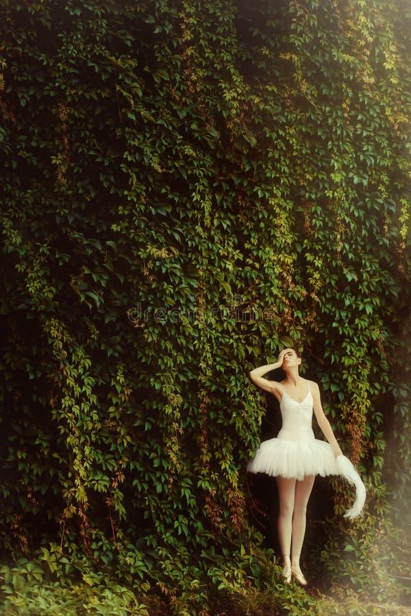 一件白色礼服的妇女芭蕾舞女演员在公园 库存照片