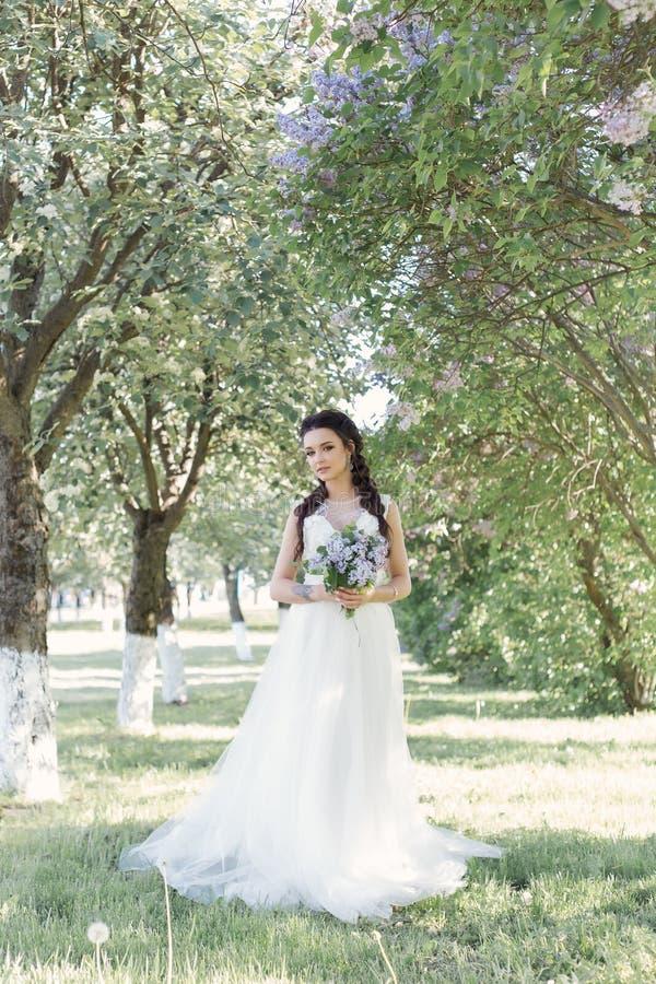 一件白色空气礼服的嫩美丽的逗人喜爱的女孩新娘有在她的手上走通过晴朗的sp的公园的丁香花束的  库存照片