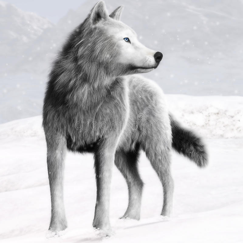 一头白色野生狼的例证与蓝眼睛和冬天背景的 向量例证