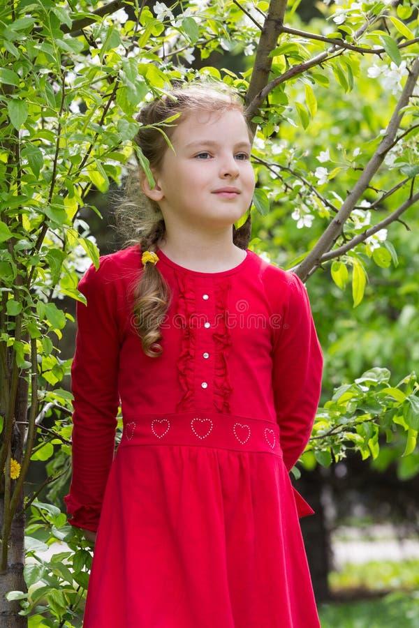 一件红色礼服的一个女孩在公园走 免版税库存照片
