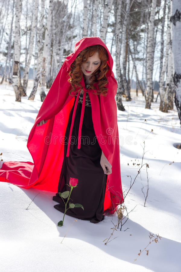 一件红色雨衣的一个少妇发现了在雪的一朵玫瑰 库存图片
