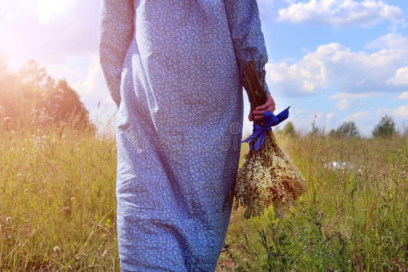一件蓝色礼服的一个女孩沿有花的一个草甸走在她的手上在日落 库存图片