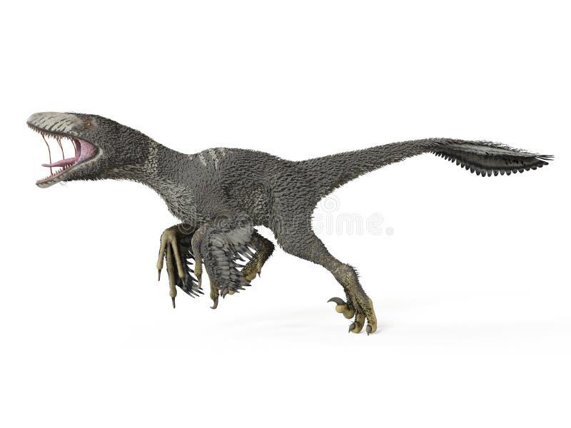 一dakotaraptor 库存例证