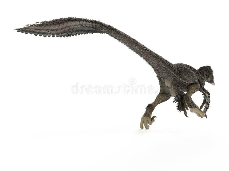 一dakotaraptor 皇族释放例证