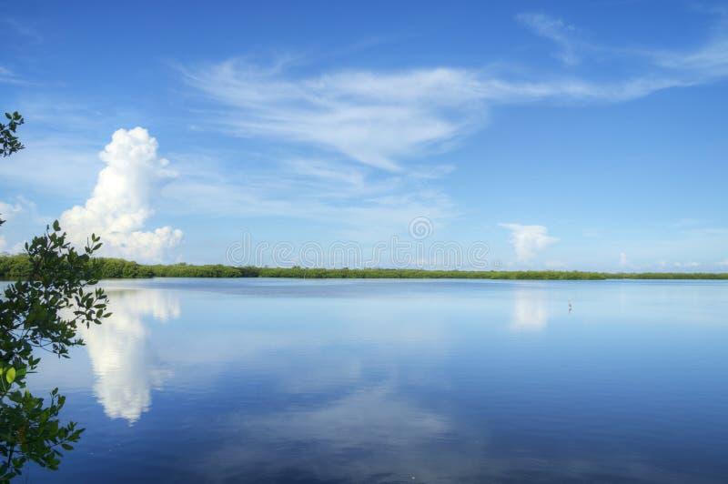 丁亲爱的自然保护区 免版税库存图片