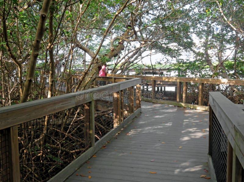 丁亲爱的野生生物保护区的木木板走道 免版税库存照片