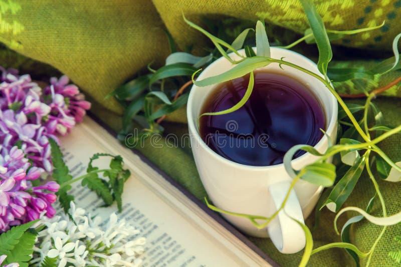 download丁香,书和一杯茶图片库存.v丁香丁香博士园图片