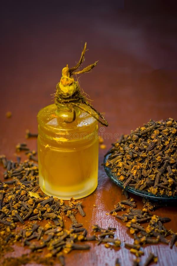 丁香油与丁香或laung粉末的  免版税库存图片