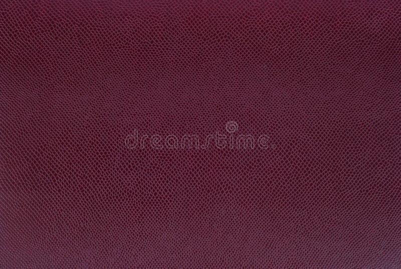 七高八低的皮革表面 免版税库存照片
