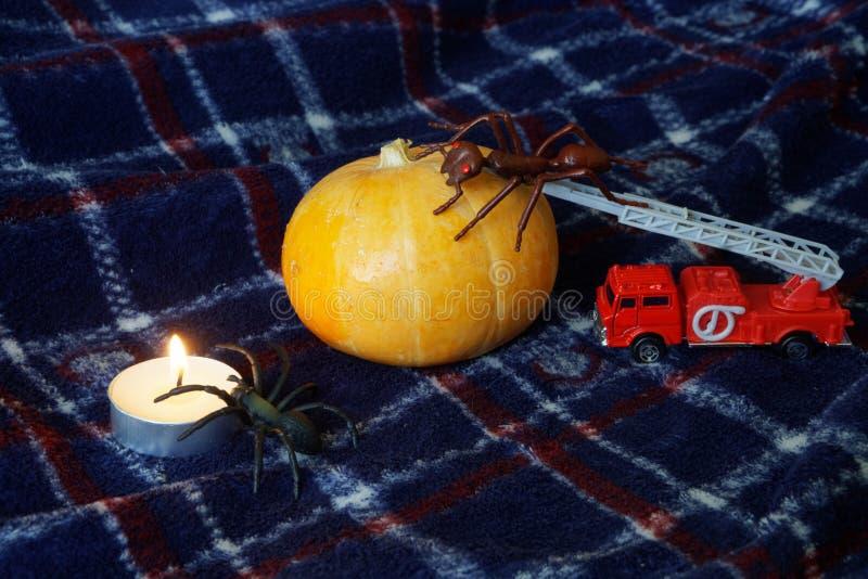 万圣夜、奇怪的昆虫和一个蜡烛的南瓜 玩具蚂蚁 库存照片