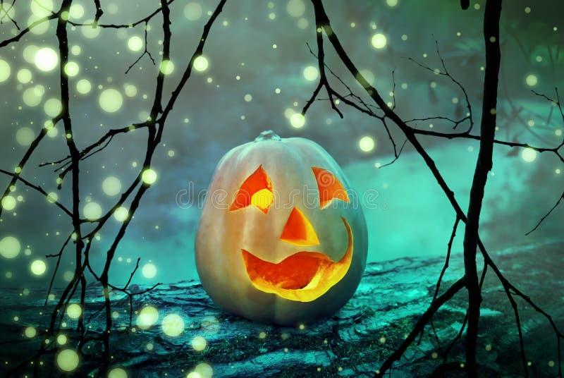 万圣夜南瓜可怕起重器灯笼头在一个神秘的有雾的森林里在鬼的晚上 免版税库存照片