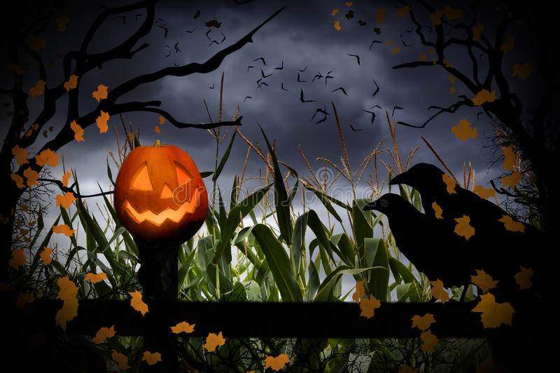 万圣夜杰克O灯笼和乌鸦 库存照片