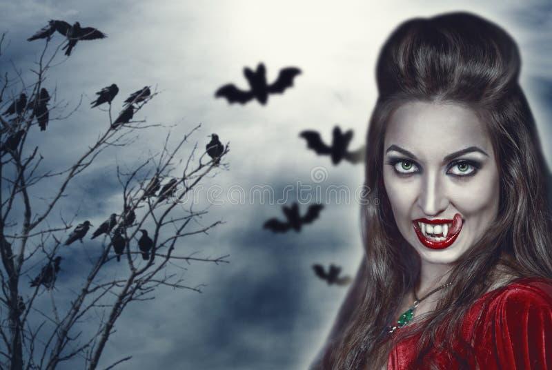 万圣夜背景的美丽的巫婆 免版税库存图片