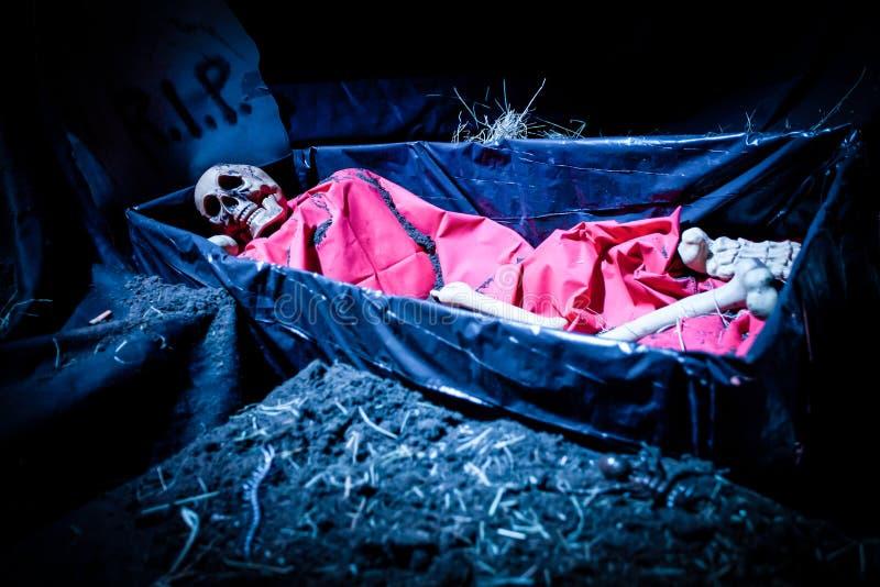万圣夜装饰玩偶骨骼 免版税库存照片