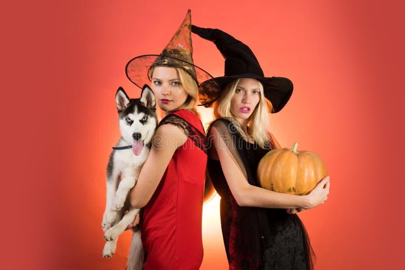 万圣节服装的可爱的模型女孩 两个时髦的女孩的愉快的正面片刻橙色背景的 库存照片