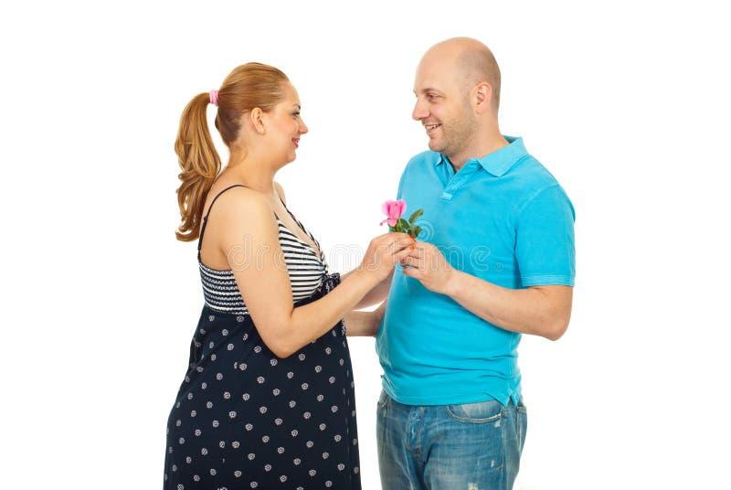 丈夫怀孕聘用的粉红色上升了到妻子 库存照片
