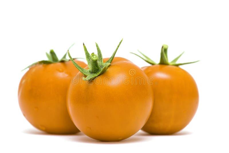 三与下落的黄色蕃茄在白色背景 E 免版税库存图片