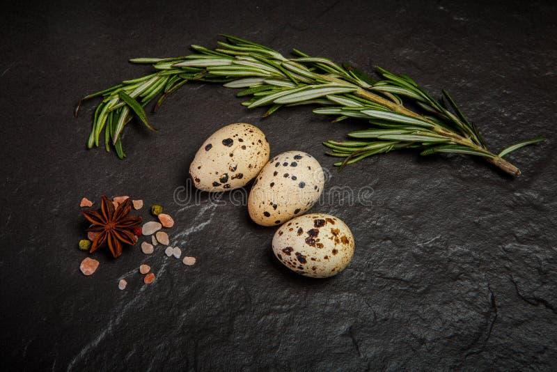 三个小鹌鹑蛋顶视图用香料和迷迭香 免版税库存图片