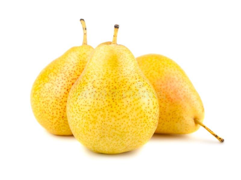 三个成熟黄色梨 库存照片