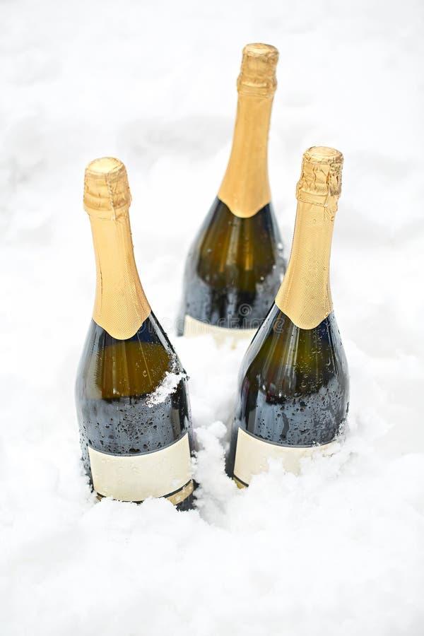 三个瓶在雪的香槟 库存照片