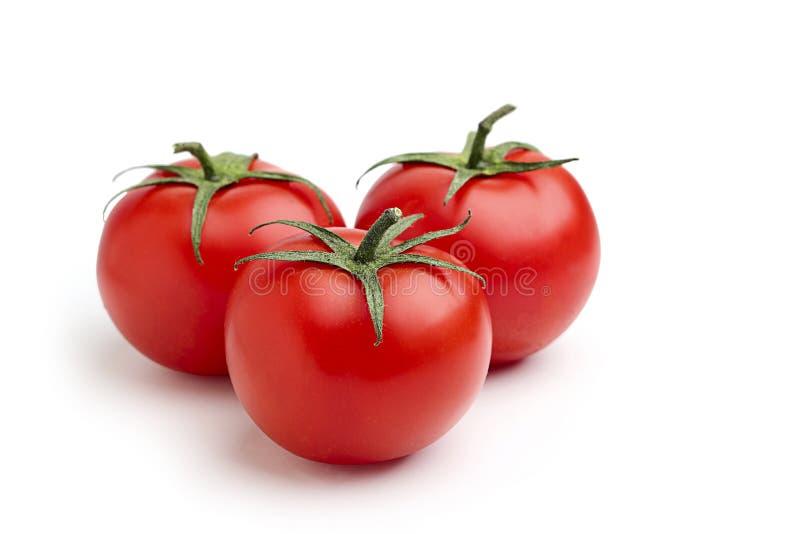 三个红色蕃茄。 库存照片