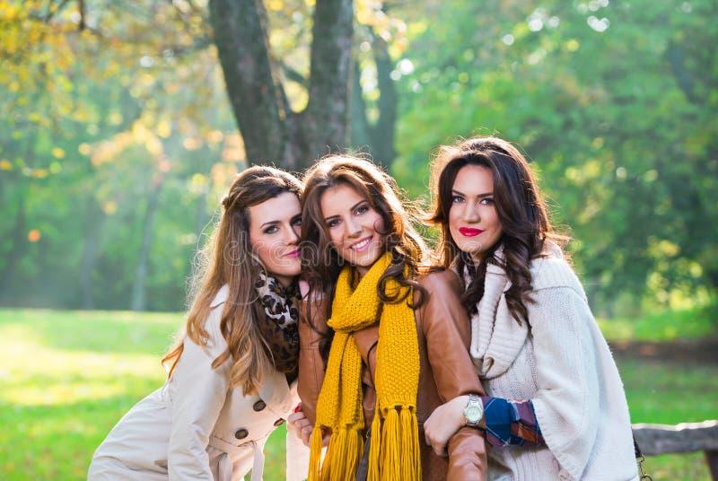 三个美丽的少妇在公园 免版税库存图片