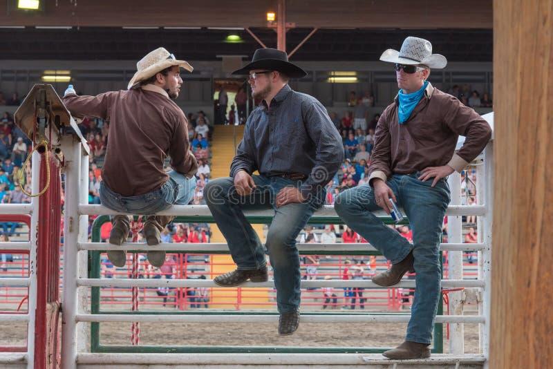 三位牛仔坐滑道和手表惊逃 图库摄影