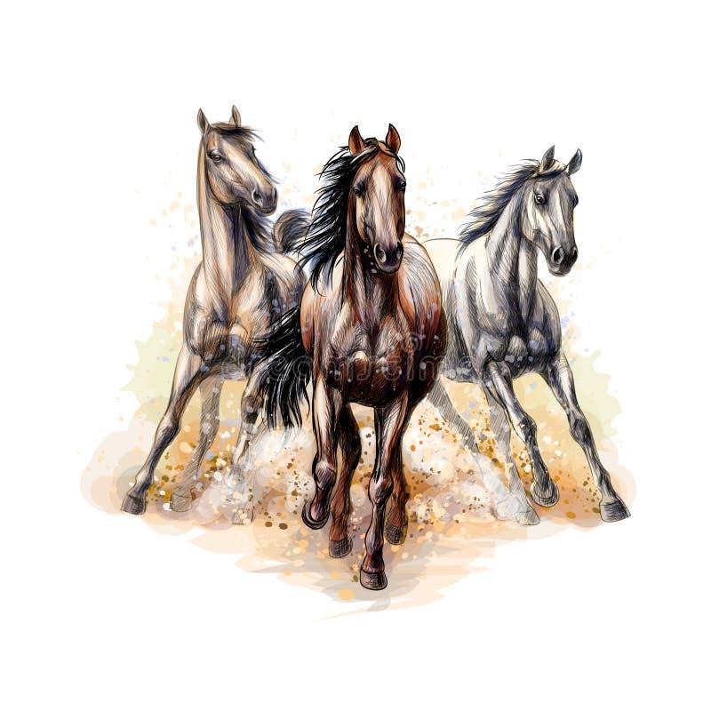 三匹马从水彩飞溅跑疾驰,手拉的剪影 库存例证