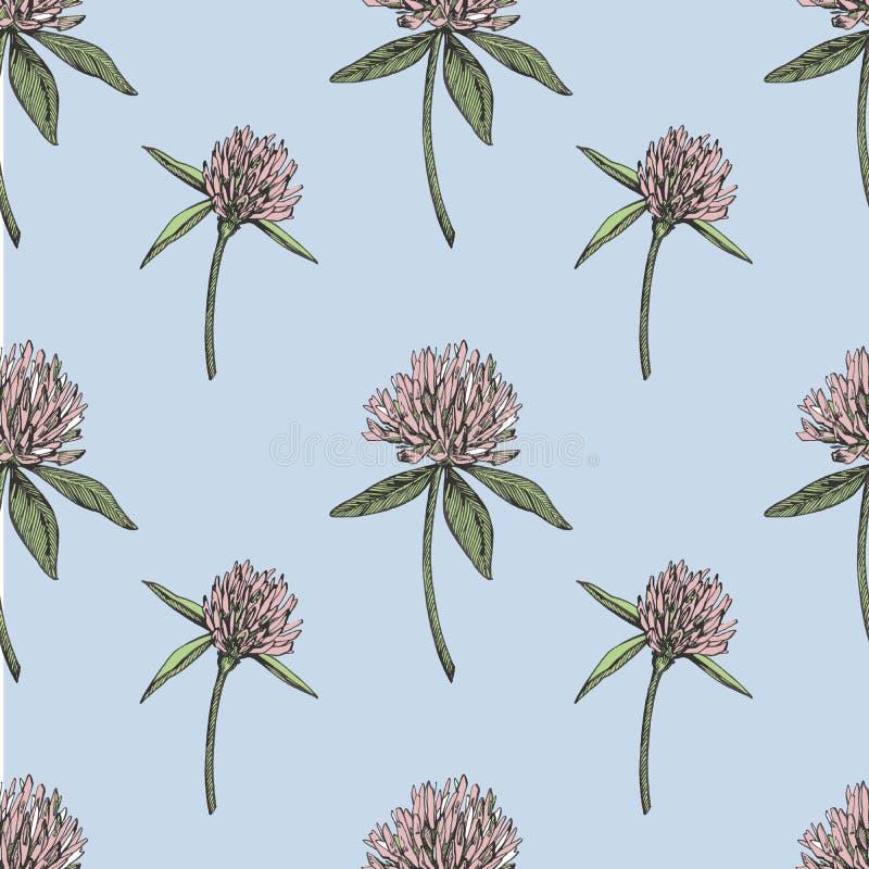 三叶草叶子和花手拉的无缝的样式图表例证 日愉快的patricks圣徒 向量例证