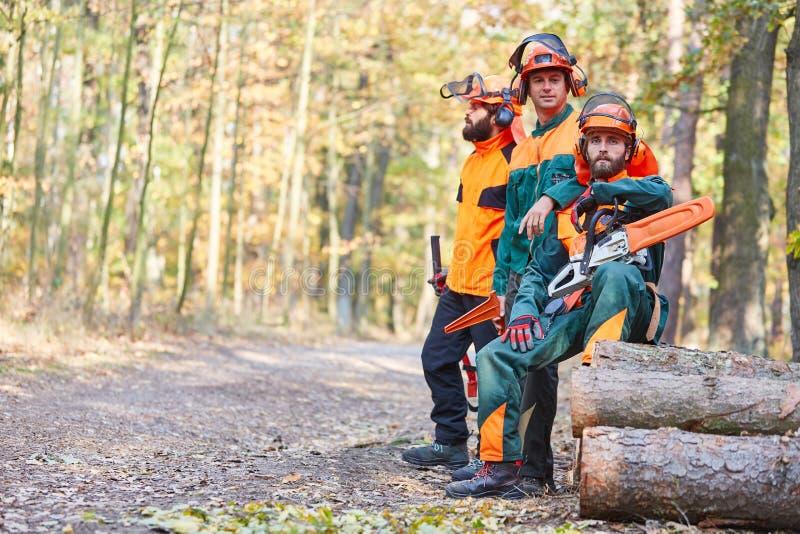三名伐木工人休假在木材收获 库存图片