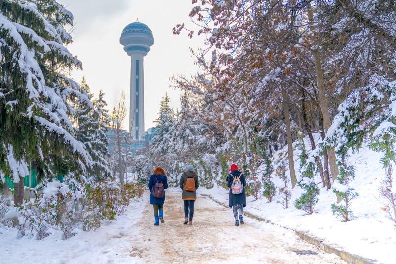 三名妇女走到Atakule通过植物园在雪下,安卡拉土耳其 免版税库存图片