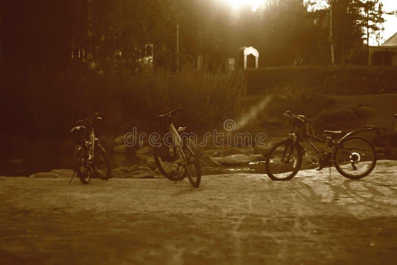 三在河岸的自行车 免版税图库摄影