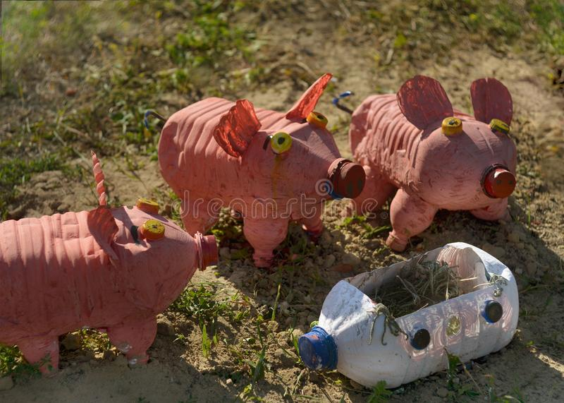 三头小的猪由塑料制成装瓶滑稽的操场 免版税库存图片