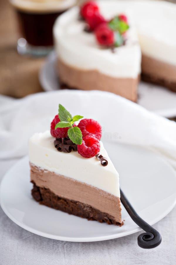三巧克力沫丝淋蛋糕 库存照片
