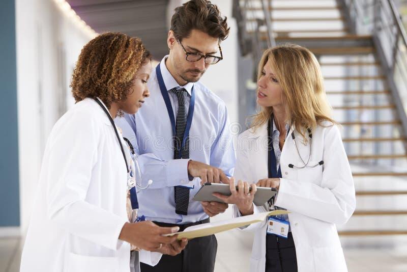 三年轻男性和女性医生咨询 库存照片