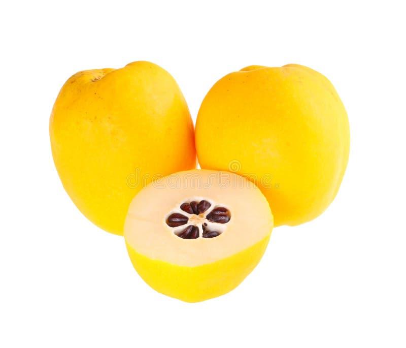 三成熟开花的柑橘果子被隔绝反对白色 免版税库存照片