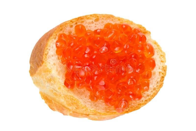 三明治用红色鱼子酱,在白色背景隔绝的长方形宝石的红色鱼子酱,特写镜头,顶视图 库存照片