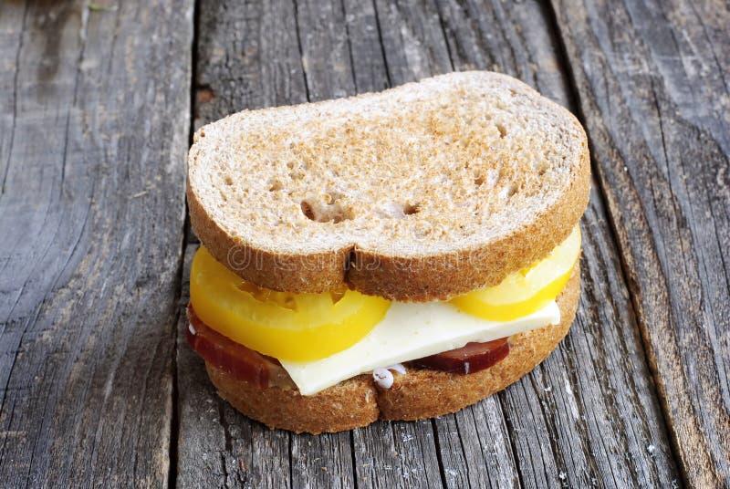 三明治用黄色蕃茄 库存图片