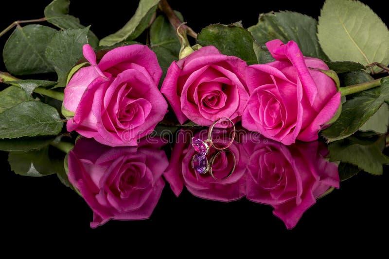 三朵玫瑰和一个唯一桃红色和金花梢圆环 免版税库存图片